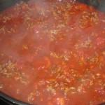 Rigatoni alla bolognese / al forno