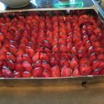Pflaumen-/Zwetschgenkuchen
