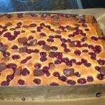 schneller Kaese-Kirschkuchen mit Schokostueckchen